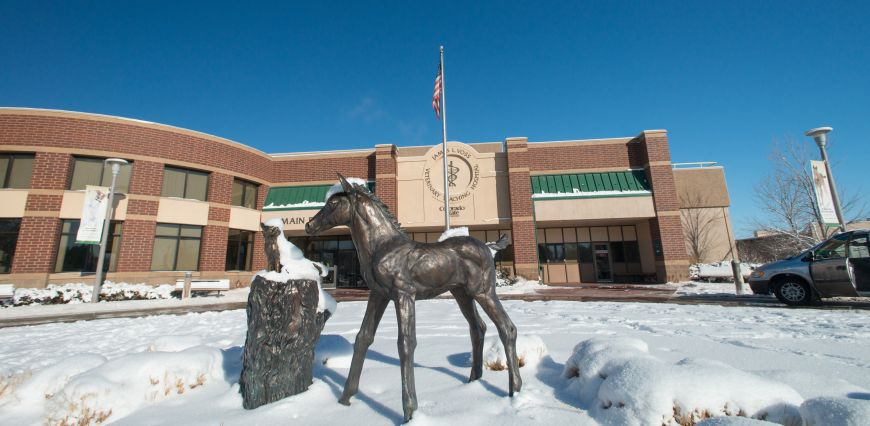 Colorado State University Veterinary Teaching Hospital covered in snow. A horse and cat statue sit in front of the hospital.