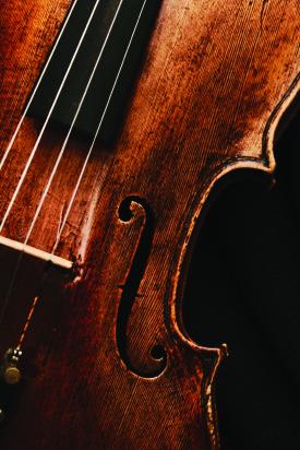bass-closeup
