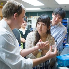 Radiation lights Fukushima student exchange