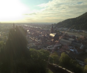 View of Heidelberg from the closing ceremony dinner at Heidelberg Castle. Photo courtesy of Tegan Emerson.
