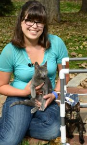 One wobbly kitten sits on a CSU veterinary student's lap while another wobbly kitten sits beside the veterinary student