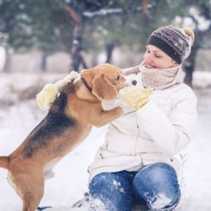A dog and female pet owner playing outside in the snow
