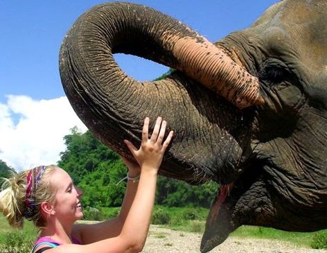 Girl and elephant