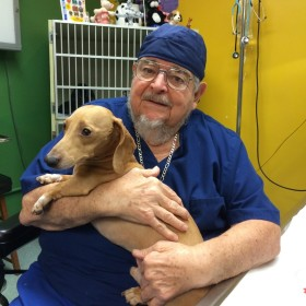 'Patron saint of pets' marks more than 5 decades as veterinarian