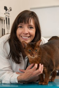 Dr. Camille Torres-Henderson with a cat in an examination room.