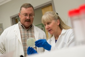 Russ Anthony examines a Petri dish with a female researcher.