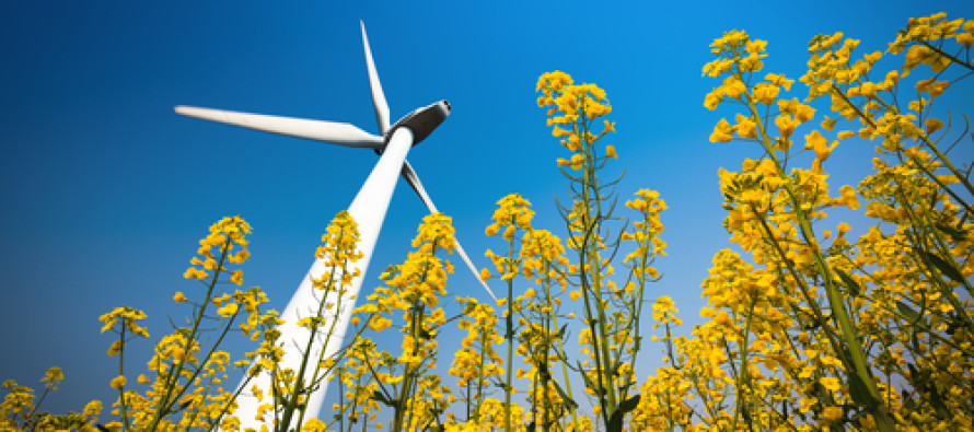 New name, wider scope for CSU's rural energy mission