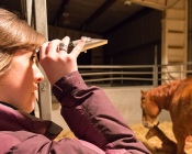 Madison Walbom, a student in the Foaling Management class, uses a refractometer to evaluate the nutritional quality of colostrum, a mare's first milk.