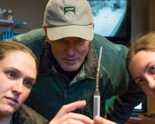 Dr. Patrick McCue teaches students Gwen Hummel and Megan Steele to analyze a sample of mare's milk for calcium content.