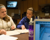 Students Caroline Conover and Madison Walbom check notes while on night watch with mares from 6 p.m. to midnight. Students keep constant eye on the horses with help from video monitors.