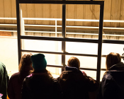 Students gather outside a stall to watch the mare and foal as they get acquainted.