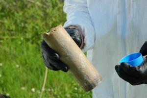 photo of soil sample