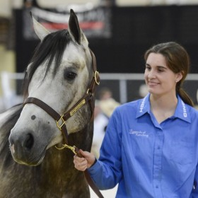Students cap year of learning with annual horse sale