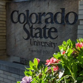 CSU among the nation's best according to U.S. News & World Report
