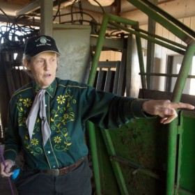 CSU and Temple Grandin Win the Internet with Webby Award