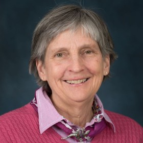 Holly Stein named Geochemistry Fellow