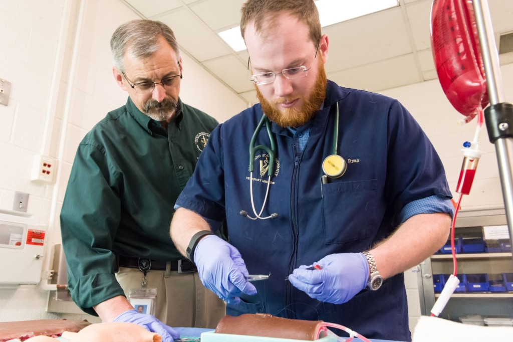 Colorado State University veterinary student Paul Ryan and Clinical Sciences professor, equine surgeon and SurgiReal co-founder Dean Hendrickson look over a SurgiReal product, March 13, 2015. Hendrickson and CSU research scholar and DVM Fausto Bellezzo created a line of artificial tissues, some of which bleed, to better train veterinary students in surgery and suture techniques.