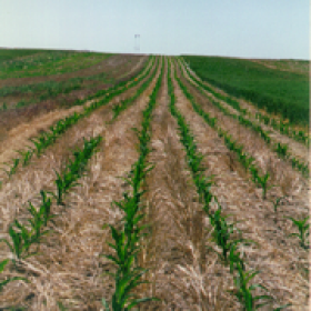 Study: Great Plains agricultural greenhouse gas emissions could be eliminated