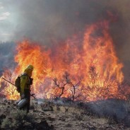 WESTFIRE Center develops national fire budgeting and planning system