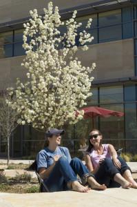 Behavioral Sciences Building at Colorado State University
