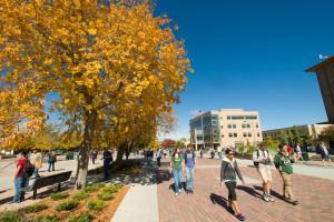 Fall at Colorado State University