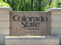 U.S. News: CSU ranks among top universities in the country