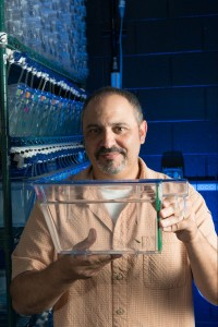 Dr. Cameron Ghalambor, Professor of Biology at Colorado State University, researches genetic plasticity in guppies. August 27, 2015