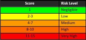 ergo Risk Scores 1