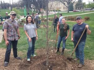 CSU students plant a tree on Arbor Day