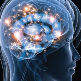 Center for Applied Cognitive Neuroscience open for business