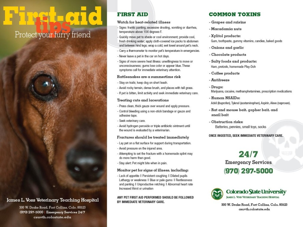 pet.first.aid.toxins