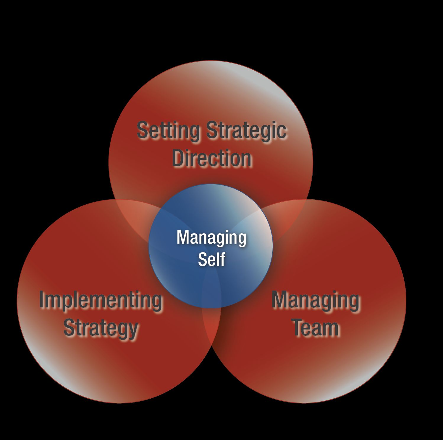 strategy direction Setting your strategic direction setting the strategic direction for your workforce plan involves understanding key mission goals and future objectives set by organization leadership and how the workforce needs to be aligned to achieve them.