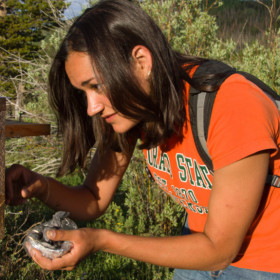 First-generation student pursues her passion to study birds