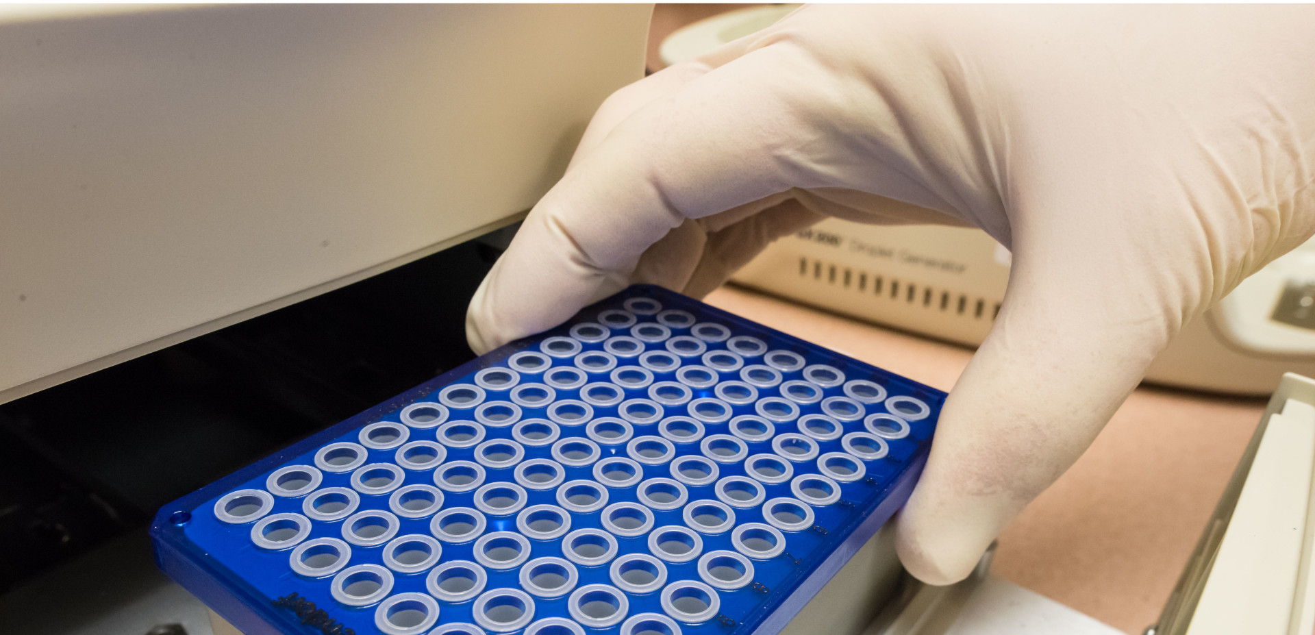 Colorado State University Microbiology, Immunology and Pathology research associate John Anderson loads a PCR plate in a Bio-Rad plate sealer, January 19, 2016. The Colorado State University department of Microbiology, Immunology and Pathology recently acquired a Bio-Rad digital PCR system that offers efficient DNA analysis.