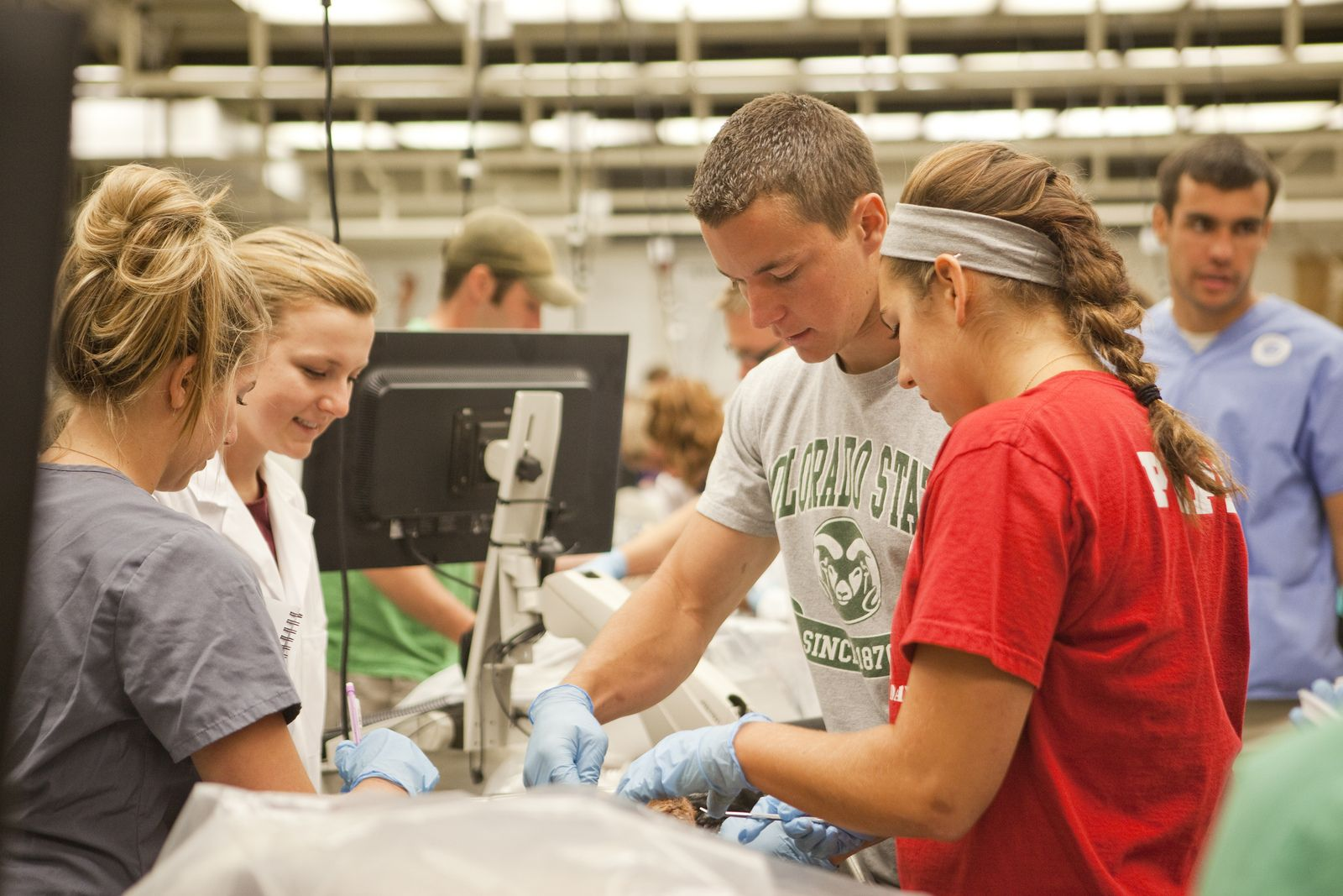A Look Inside: CSU\'s world-class anatomy lab engages students of all ...