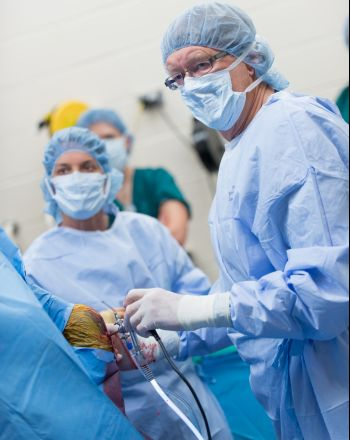 Dr. Wayne McIlwraith and Dr. Laurie Goodrich perform arthroscopic surgery on a quarter horse. July 24, 2014 Dr. Wayne McIlwraith and Dr. Laurie Goodrich perform arthroscopic surgery on a quarter horse. July 24, 2014