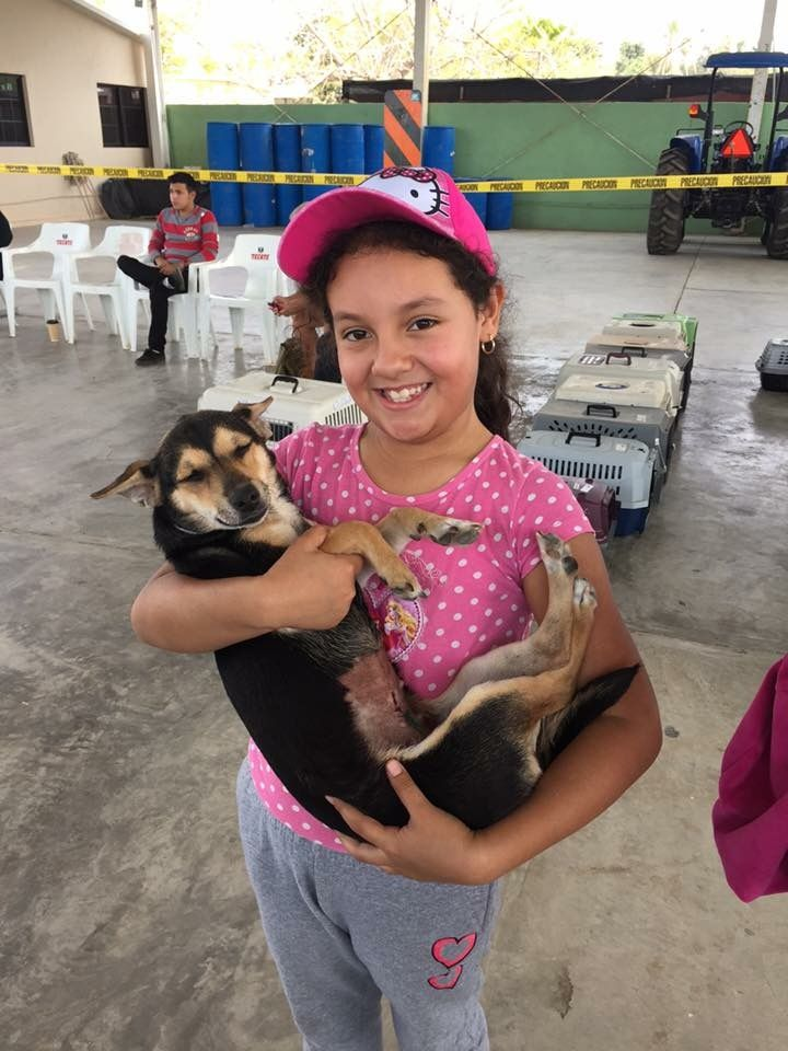 A girl takes home her dog after spay surgery at a recent Todos Santos clinic.