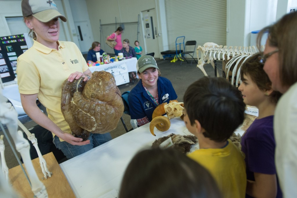 The James L. Voss Veterinary Teaching Hospital hosts an open house for members of the public. April 25, 2015