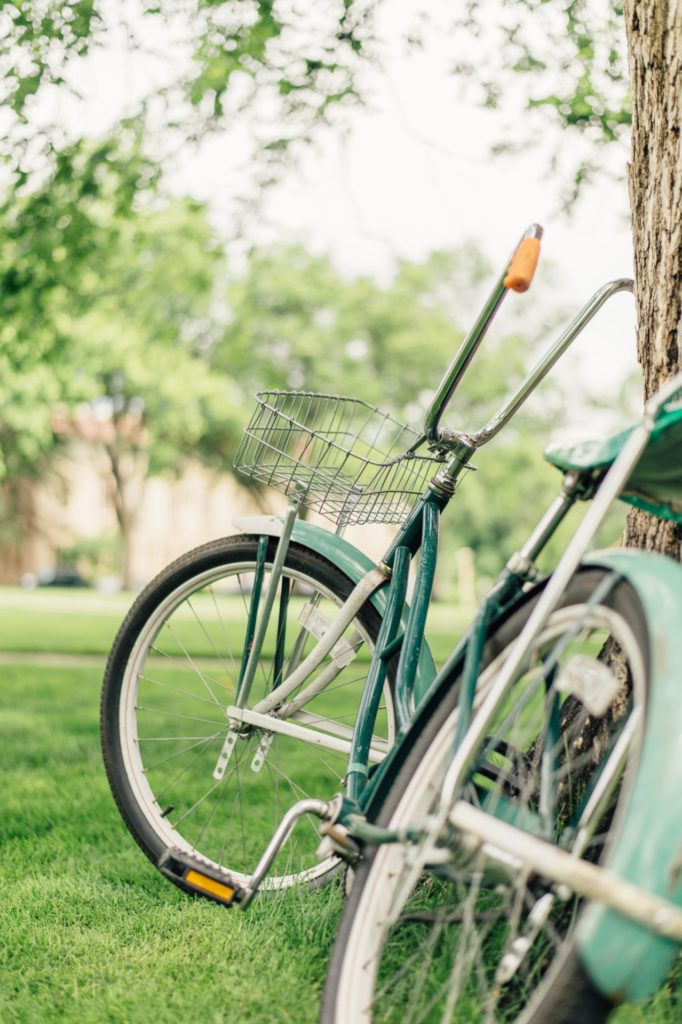 A green bike leaning against a tree on CSU's Oval