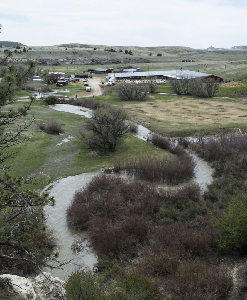 Horse Creek winds around the lamb camp at Warren Livestock Ranch in Wyoming Friday May 6, 2015, during a lambing practice at the lambing camp of the Warren Livestock Ranch in Wyoming.