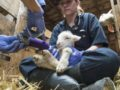 'Lambulance' chasers: Veterinary team aids rangeland newborns and ewes
