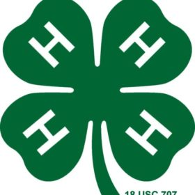4-Hers from around Colorado hold conference on campus