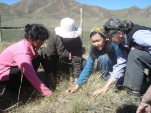 Maria Fernandez-Gimenez in Mongolia