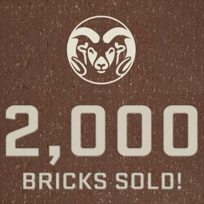 Bricks_2000