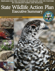 Colorado Wildlife Action Plan cover