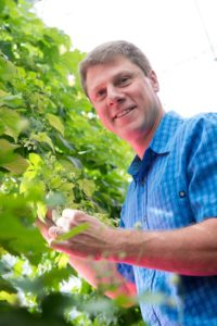 Bill Bauerle, Professor of Horticulture and Landscape Architecture, researches hops growing under artificial light. June 14, 2016