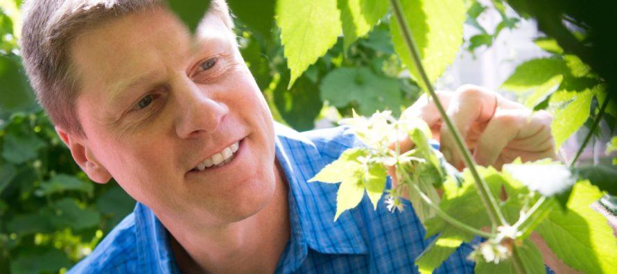 CSU Professor of Horticulture hoppy to help Colorado breweries