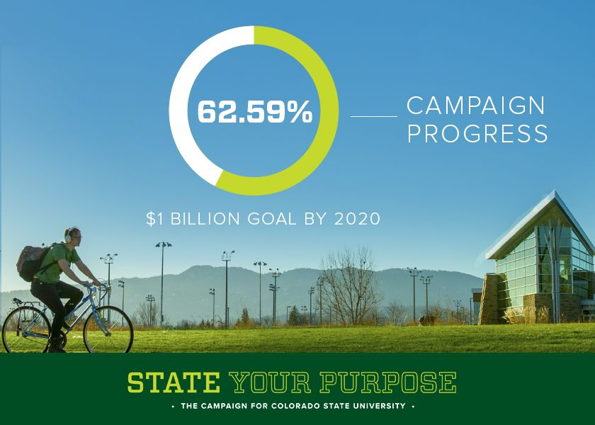 record support propels csu annual fundraising to nearly 200m