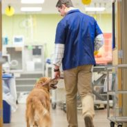 Heal thyself: Colorado State University hosts veterinary wellness summit