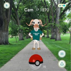 Move-In 2016: Poke-CAM says watch where you Go